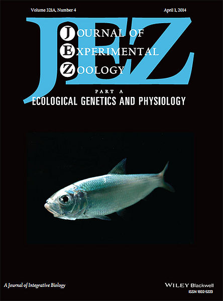 File:JEZ cover.jpg